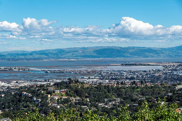 1 Violet Ln, San Carlos, CA 94070 (#ML81692807) :: Brett Jennings Real Estate Experts
