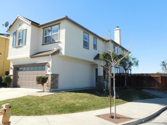 101 Pelican Dr, Watsonville, CA 95076 (#ML81692905) :: The Kulda Real Estate Group