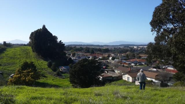 Shamrock Dr, San Pablo, CA 94806 (#ML81692941) :: Brett Jennings Real Estate Experts