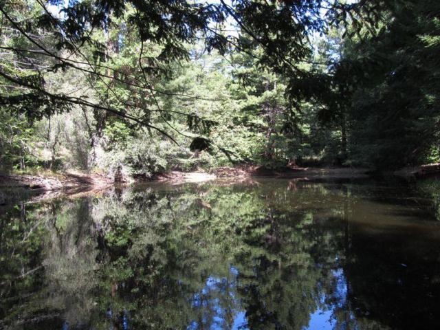 0 Two Bar Rd, Boulder Creek, CA 95006 (#ML81693533) :: The Goss Real Estate Group, Keller Williams Bay Area Estates