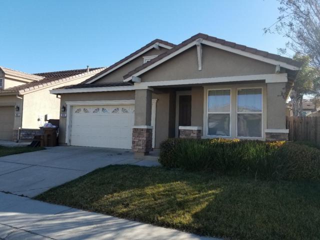 10141 Lofton Way, Elk Grove, CA 95757 (#ML81693792) :: Brett Jennings Real Estate Experts