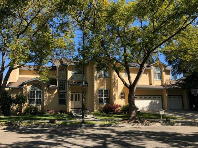 686 Regas Dr, Campbell, CA 95008 (#ML81693803) :: Brett Jennings Real Estate Experts