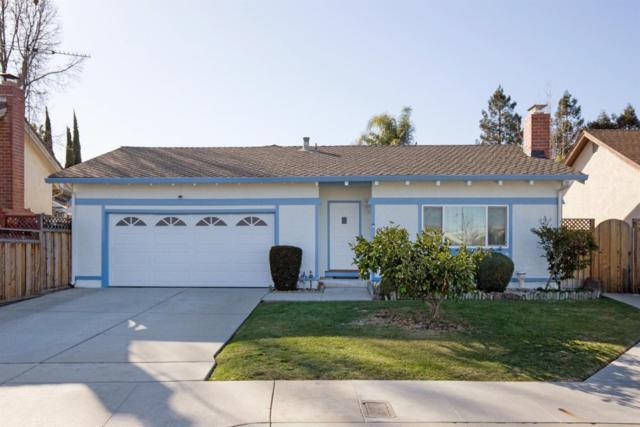 1429 Spruance Ct, San Jose, CA 95128 (#ML81693812) :: Brett Jennings Real Estate Experts