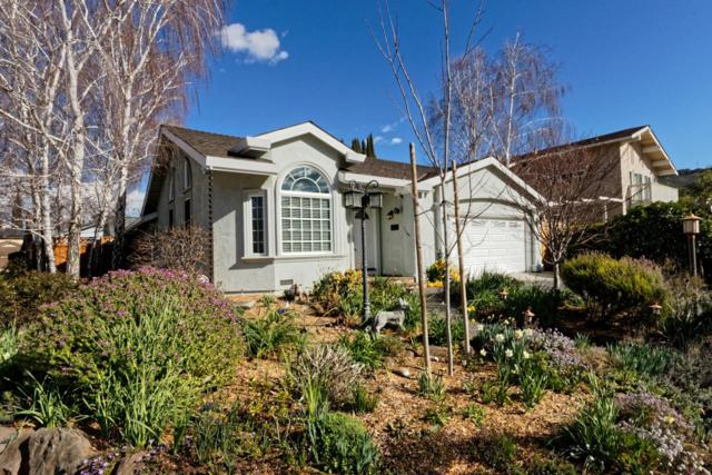 6302 Pearlroth Dr, San Jose, CA 95123 (#ML81693817) :: Brett Jennings Real Estate Experts