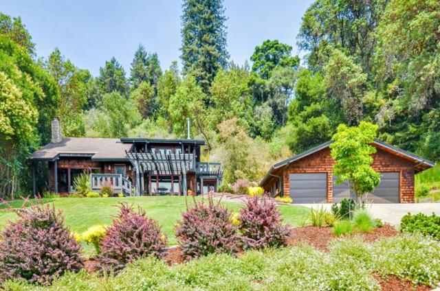 1181 Avocado Rd, Watsonville, CA 95076 (#ML81694127) :: The Dale Warfel Real Estate Network