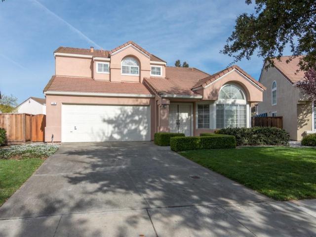 129 Forsum Ct, San Jose, CA 95138 (#ML81694800) :: The Dale Warfel Real Estate Network