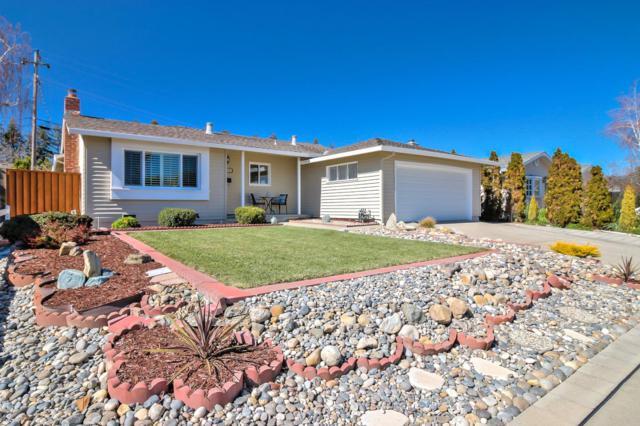 1099 Kelly Dr, San Jose, CA 95129 (#ML81695186) :: The Dale Warfel Real Estate Network