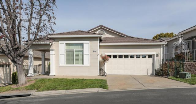 8887 Wine Valley Cir, San Jose, CA 95135 (#ML81695874) :: Brett Jennings Real Estate Experts