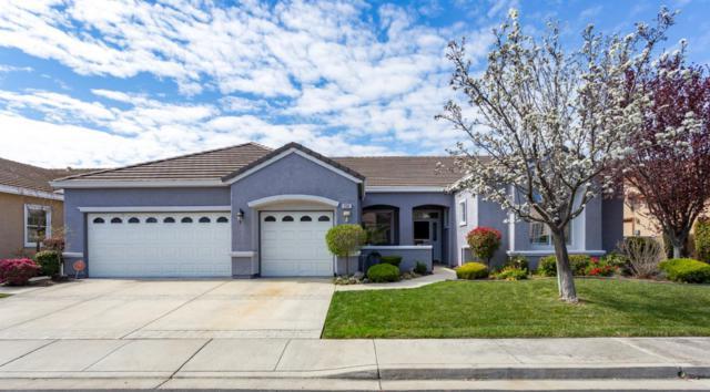 734 Richardson Dr, Brentwood, CA 94513 (#ML81696197) :: von Kaenel Real Estate Group