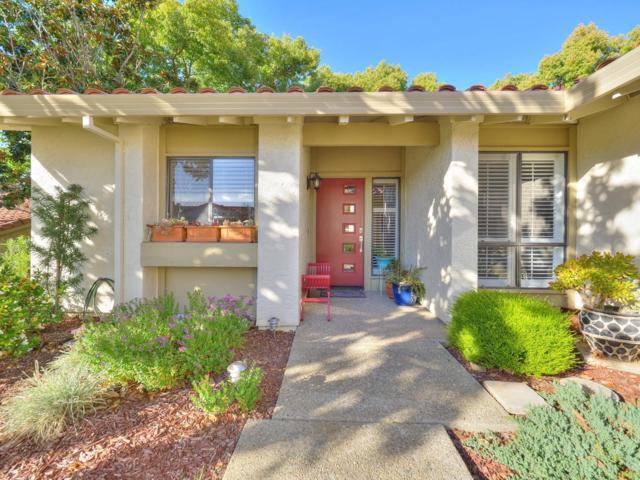 8345 Riesling Way, San Jose, CA 95135 (#ML81696406) :: The Goss Real Estate Group, Keller Williams Bay Area Estates