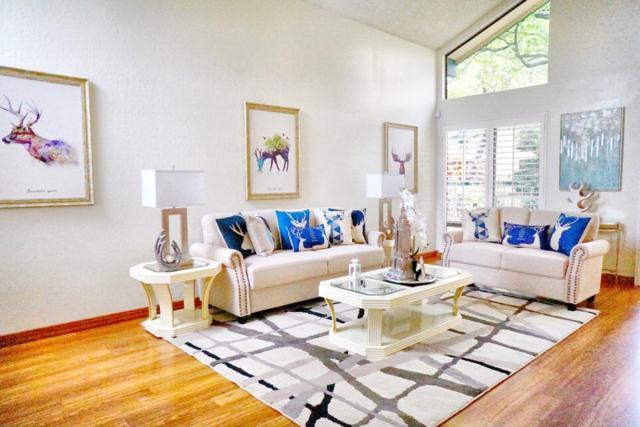 505 Holly Oak Ln, Alameda, CA 94502 (#ML81696481) :: The Dale Warfel Real Estate Network