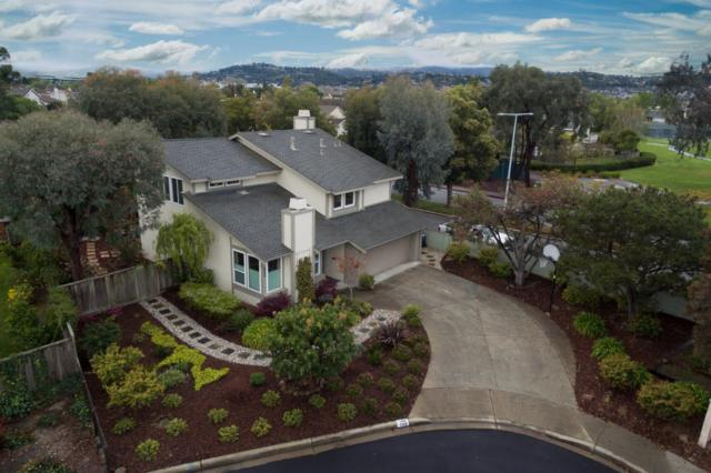 500 Botany Ct, Foster City, CA 94404 (#ML81696688) :: The Gilmartin Group