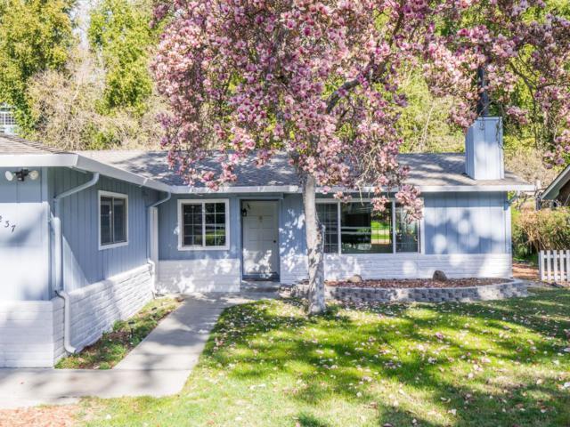 237 Riverside Ave, Ben Lomond, CA 95005 (#ML81696790) :: The Dale Warfel Real Estate Network