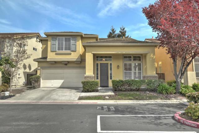 184 Brandt Ct, Milpitas, CA 95035 (#ML81697060) :: Intero Real Estate