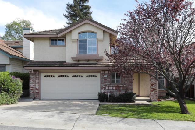 3340 Country Leaf Ct, San Jose, CA 95132 (#ML81697087) :: Intero Real Estate