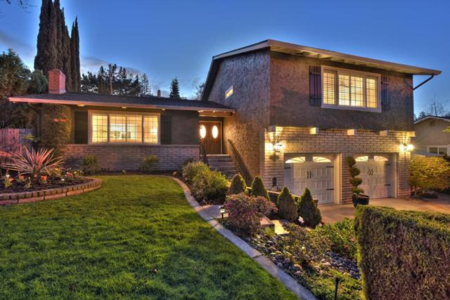 5925 Hosta Ln, San Jose, CA 95124 (#ML81697103) :: The Dale Warfel Real Estate Network