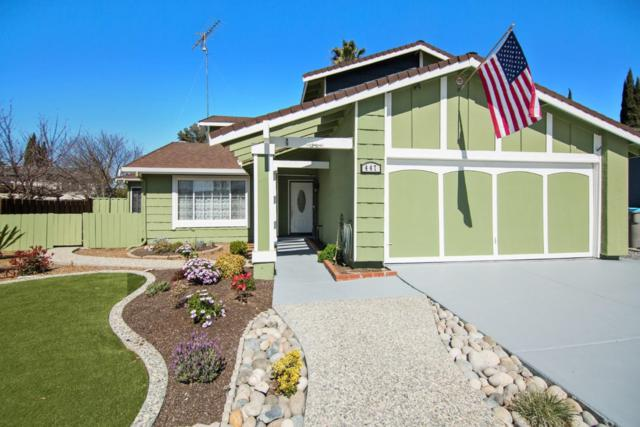 447 Fontanelle Dr, San Jose, CA 95111 (#ML81697219) :: The Dale Warfel Real Estate Network