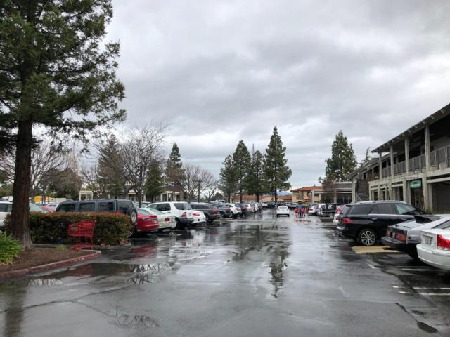 , Los Gatos, CA 95032 (#ML81697238) :: The Dale Warfel Real Estate Network