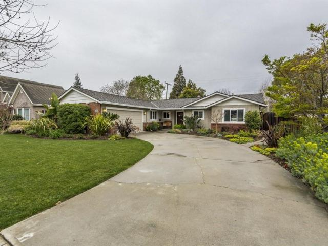 1533 San Ardo Dr, San Jose, CA 95125 (#ML81697267) :: The Dale Warfel Real Estate Network