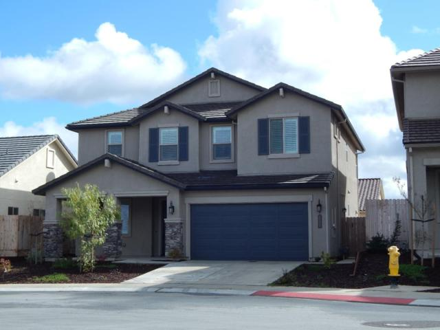 1509 Foxtail Ct, Hollister, CA 95023 (#ML81697317) :: The Dale Warfel Real Estate Network
