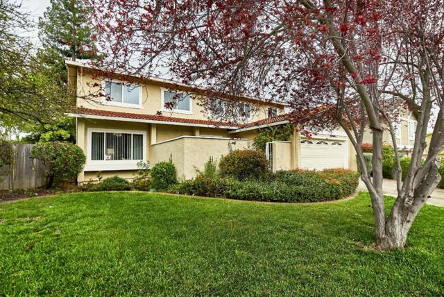 6531 Springpath Ln, San Jose, CA 95120 (#ML81697704) :: The Dale Warfel Real Estate Network
