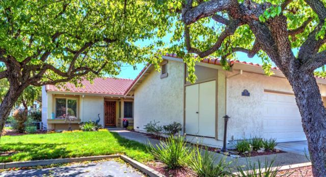 8379 Riesling Way, San Jose, CA 95135 (#ML81697834) :: The Kulda Real Estate Group