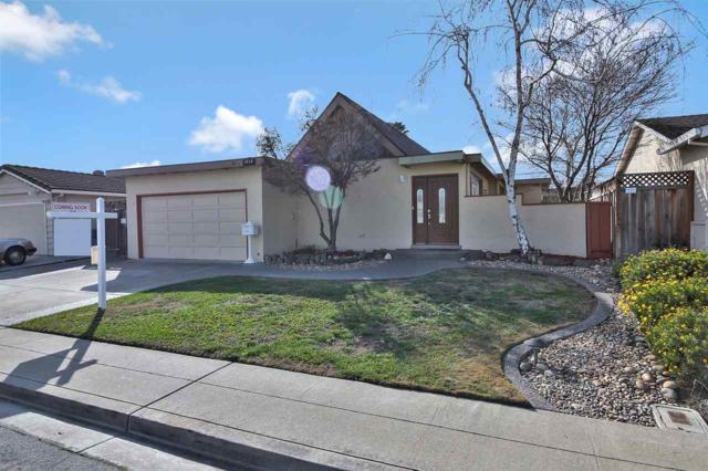 5048 Hyde Park, Fremont, CA 94538 (#MR40807842) :: Intero Real Estate