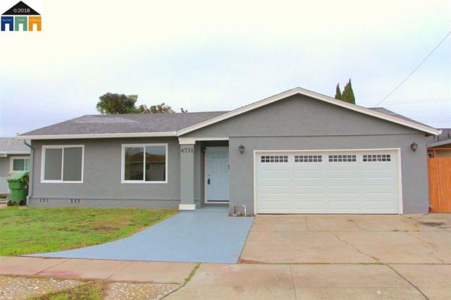 4731 Pardee Ave, Fremont, CA 94538 (#MR40810900) :: The Kulda Real Estate Group