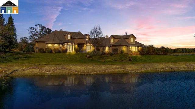 7157 Elizabeth Court, Valley Springs, CA 95252 (#MR40811492) :: Brett Jennings Real Estate Experts