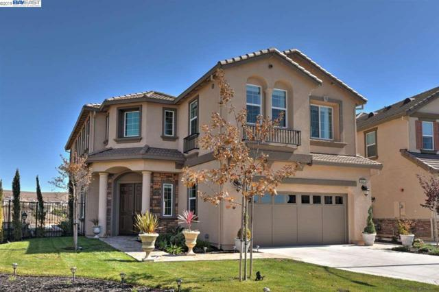 9691 Zac Ct, Dublin, CA 94568 (#BE40856760) :: Strock Real Estate