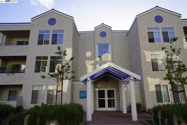 535 Pierce St, Albany, CA 94706 (#BE40864514) :: The Goss Real Estate Group, Keller Williams Bay Area Estates