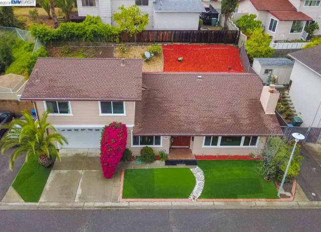 502 Appian Way, Union City, CA 94587 (#BE40866275) :: Keller Williams - The Rose Group