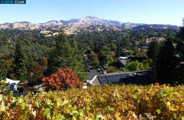 173 Rudgear Drive, Walnut Creek, CA 94596 (#CC40809138) :: Perisson Real Estate, Inc.