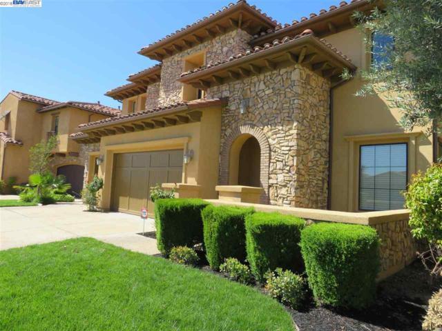 4055 Castellina Way, Manteca, CA 95337 (#BE40818559) :: Strock Real Estate
