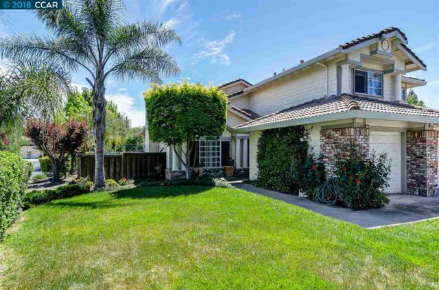 301 Sun Stream Ct, Danville, CA 94506 (#CC40820982) :: Strock Real Estate