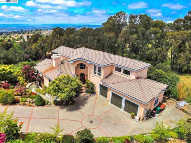 3906 Arbutus Ct, Hayward, CA 94542 (#BE40821854) :: Strock Real Estate