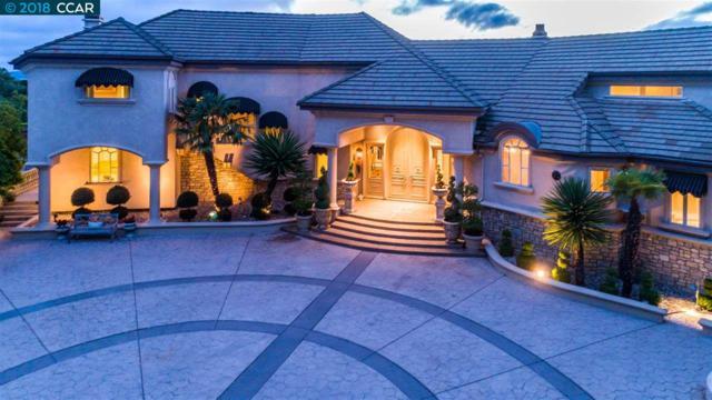 63 Blackhawk Club Ct, Danville, CA 94506 (#CC40821951) :: Strock Real Estate