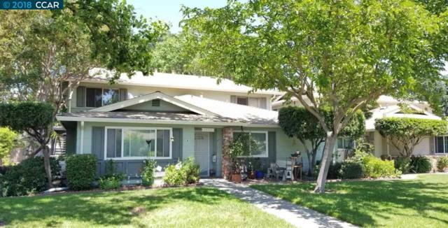 1477 Del Rio Cir, Concord, CA 94518 (#CC40825000) :: Strock Real Estate