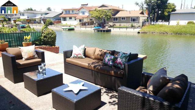 325 Laguna Vis, Alameda, CA 94501 (#MR40826381) :: Julie Davis Sells Homes