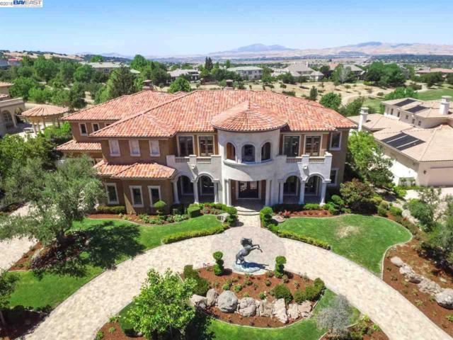 1181 Germano Way, Pleasanton, CA 94566 (#BE40826813) :: The Kulda Real Estate Group