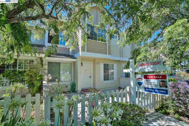 5109 Shalimar Circle, Fremont, CA 94555 (#BE40829109) :: Strock Real Estate