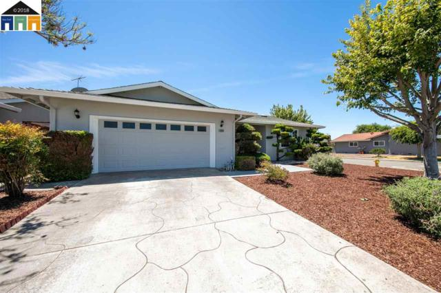35033 Perry Rd, Union City, CA 94587 (#MR40830484) :: The Goss Real Estate Group, Keller Williams Bay Area Estates