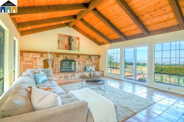 46953 Ocotillo Ct, Fremont, CA 94539 (#MR40830964) :: Intero Real Estate