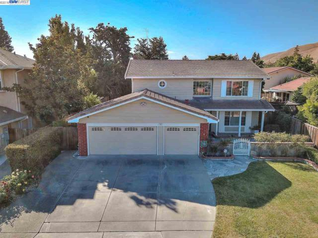 96 Madrid Pl, Fremont, CA 94539 (#BE40831016) :: The Warfel Gardin Group