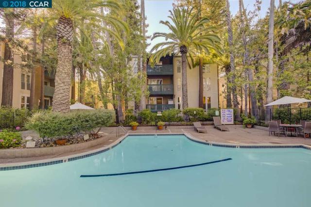 1246 Walker Ave, Walnut Creek, CA 94596 (#CC40833331) :: Intero Real Estate