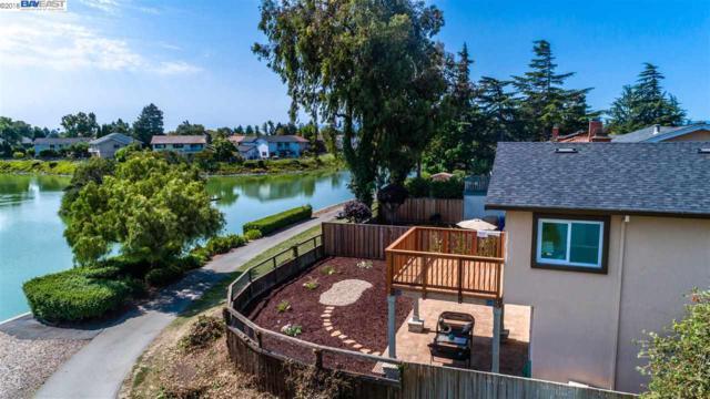 5104 Ramsgate, Newark, CA 94506 (#BE40833724) :: The Goss Real Estate Group, Keller Williams Bay Area Estates