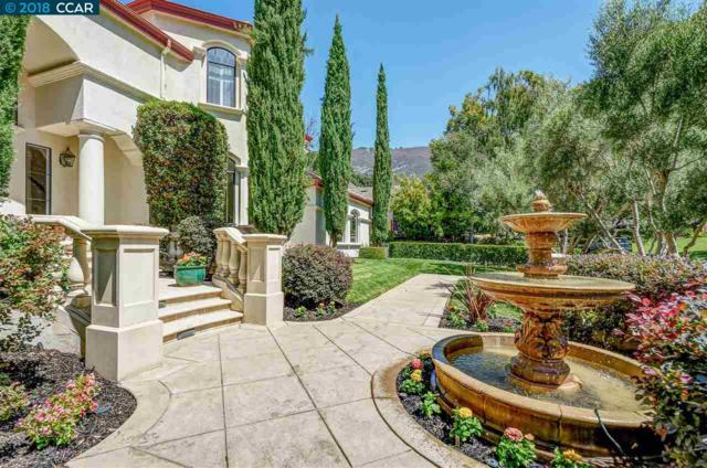2954 Deer Meadow Dr, Danville, CA 94506 (#CC40834526) :: Julie Davis Sells Homes