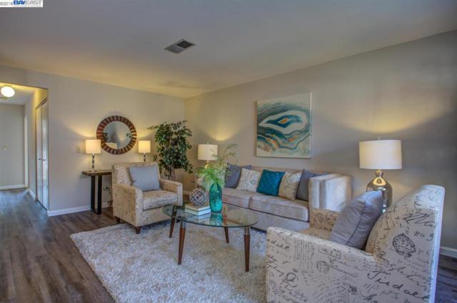 46948 Shale Cmn, Fremont, CA 94539 (#BE40834536) :: Intero Real Estate