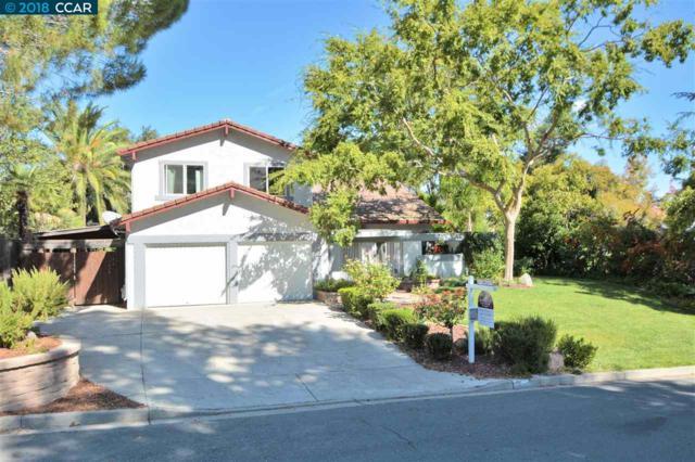 30 Mt Tamalpais Ct, Clayton, CA 94517 (#CC40835212) :: The Kulda Real Estate Group