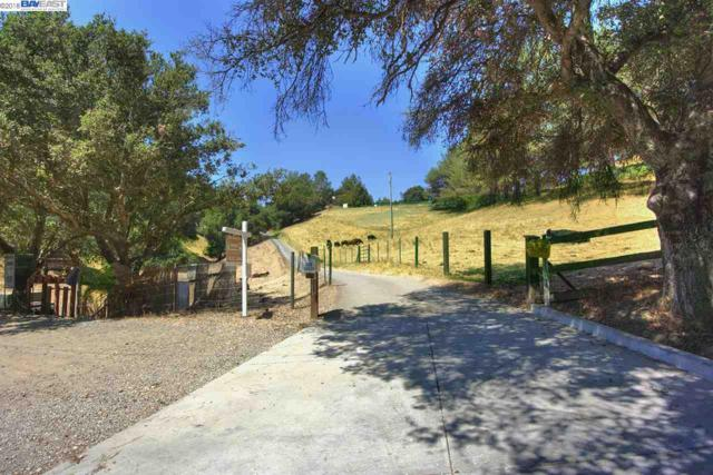33319 Palomares Rd, Castro Valley, CA 94552 (#BE40836119) :: Julie Davis Sells Homes